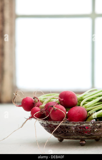A bowl full of fresh radishes against an illuminated window. - Stock-Bilder