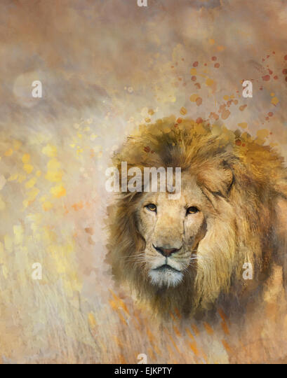 Digital Painting Of African Lion - Stock-Bilder