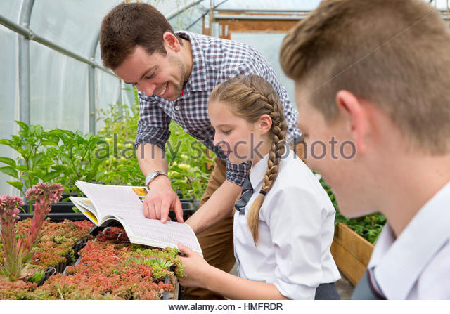 Teacher and middle school students with book learning gardening in plant greenhouse - Stock-Bilder