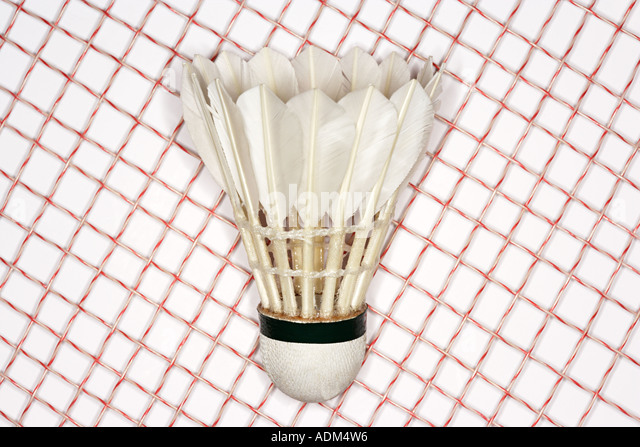 Badminton racket and shuttlecock - Stock Image