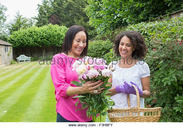 Mother and grown daughter gathering flowers in garden - Stock Image