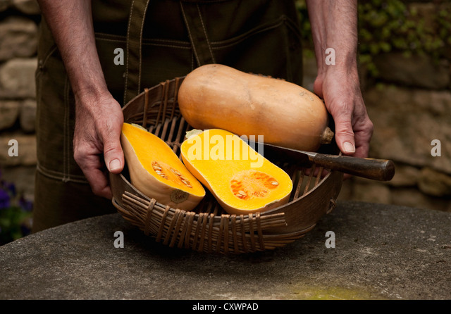 Man with basket of butternut squash - Stock Image