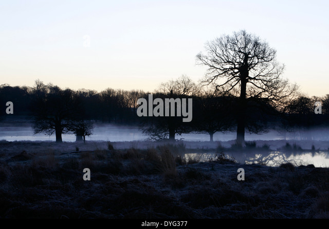 Early morning mist hanging over Leg of Mutton pond in Richmond Park, London, UK - Stock Image
