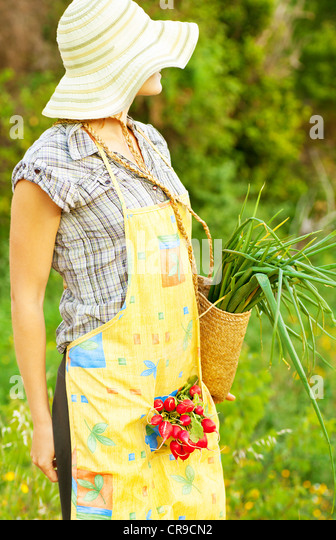 Happy woman gardener working on field, young female holding basket, girl growing organic green vegetables and fruits - Stock Image