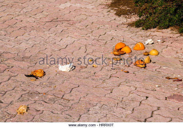 Food Waste on the street - Stock Image