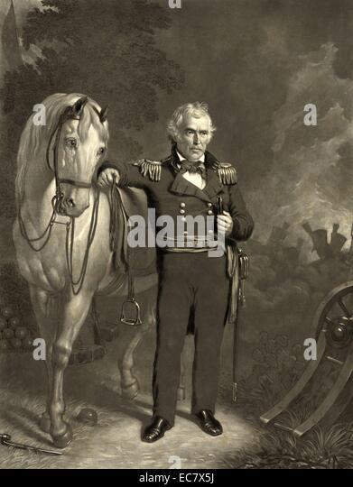 President Zachary Taylor - Stock-Bilder