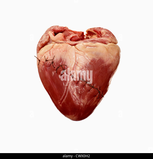 Close up of stitched heart - Stock Image