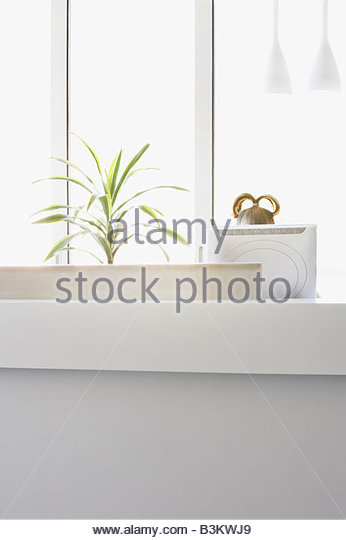 Top of woman's head over computer monitor - Stock Image