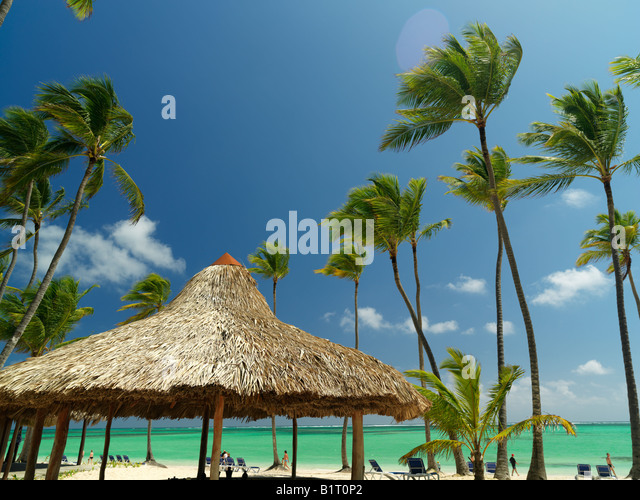 Dominican Republic Punta Cana Bavaro Beach palm trees and palapa on white sandy beach facing the sea - Stock Image