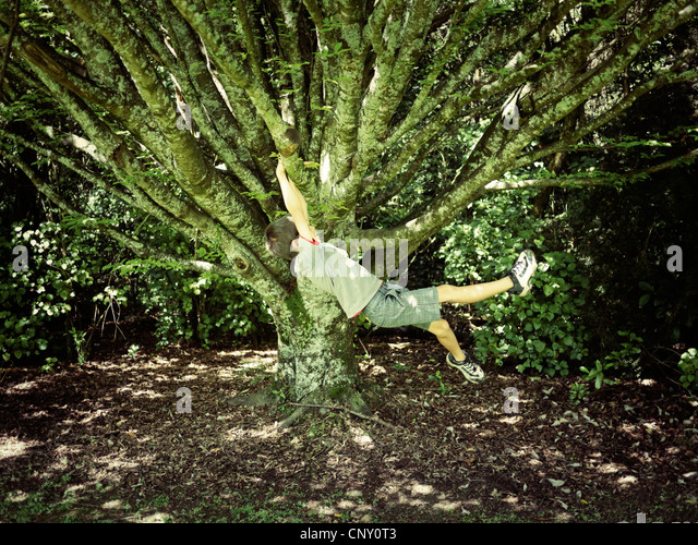 Boy swings on tree branch. - Stock Image