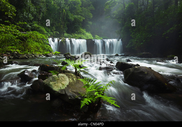 Nandroya Falls in Wooroonooran National Park.  Atherton Tablelands, Innisfail, Queensland, Australia - Stock Image