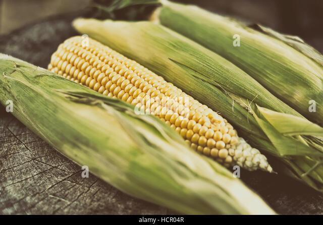 Ripe corn on a wooden table - Stock Image