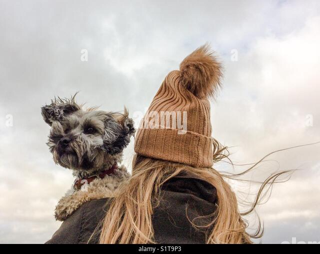 A fashionable girl in a woolly bobble hat carrying her scruffy pet dog  on her shoulder on a stormy, windy day - Stock Image