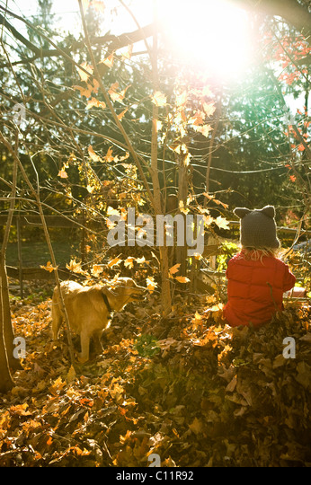 A boy and his dog in the fall. - Stock Image