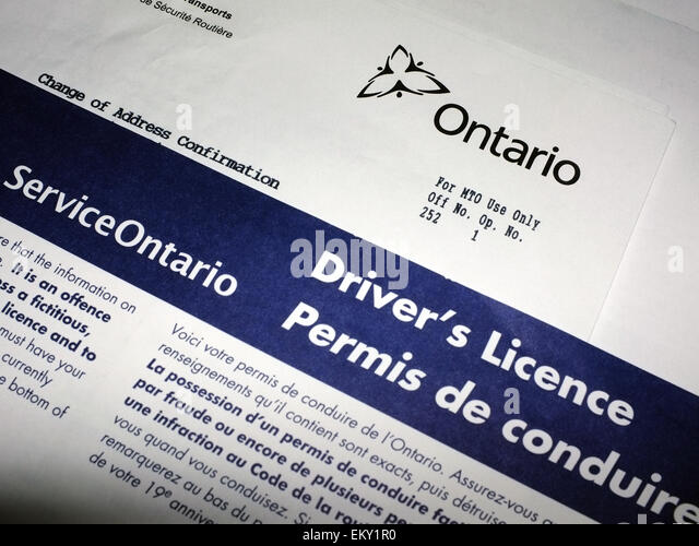 Ontario driver's license paperwork. - Stock Image