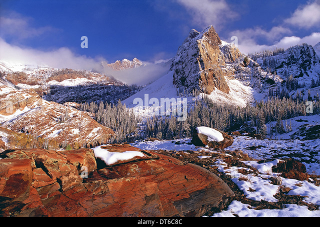 Winter in Cottonwood Canyon mountains Wasatch Range. Pine forests in snow with low cloud. The Twin Peaks wilderness - Stock Image