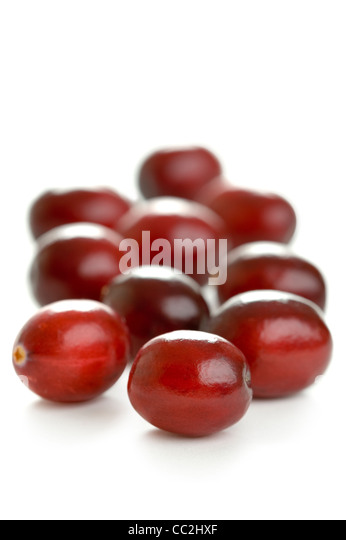 fresh cranberries isolated on a white background - Stock Image