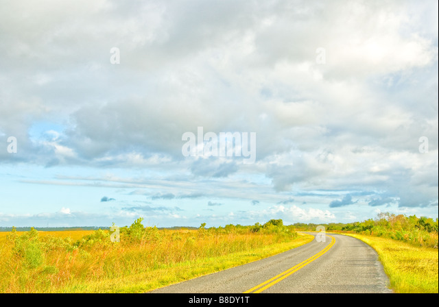 Everglades National Park Main Park Road to Flamingo at the Homestead section entrance - Stock Image