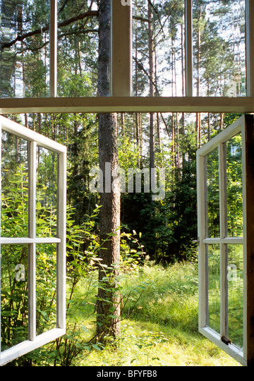 Open windows looking out into woodland near St Petersburg, Russia - Stock Image