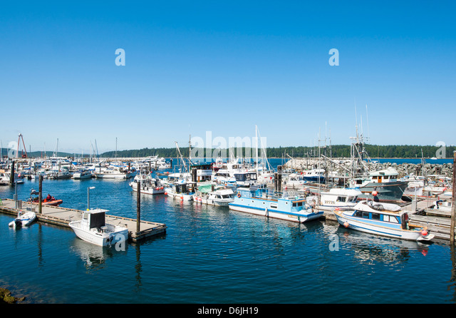 Harbour Port McNeill, British Columbia, Canada, North America - Stock Image