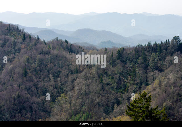 Tennessee North Carolina Great Smoky Mountains Newfound Gap trees ridge peak - Stock Image