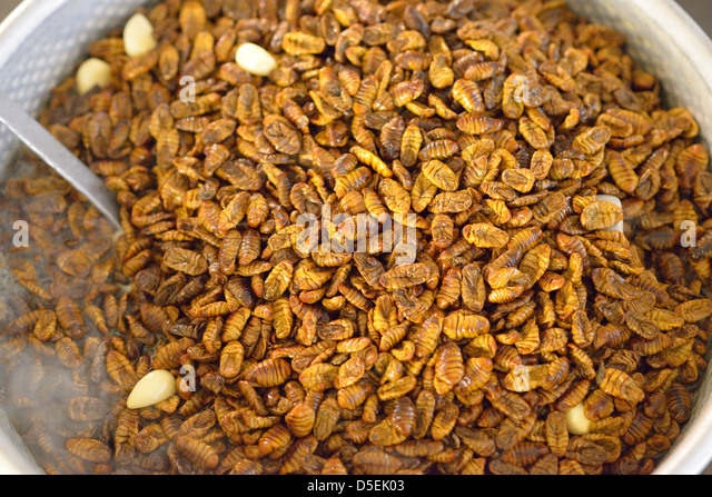 Beondegi, a Korean snack made from pupae of silk worms. - Stock Image