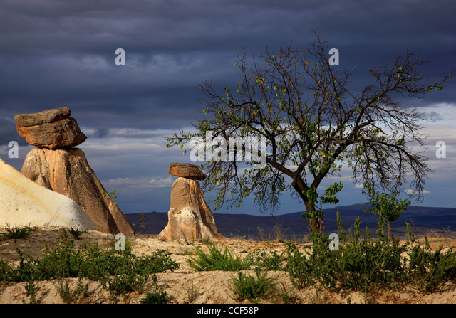 Typical Cappadocian landscape, close to Urgup, on the road to Goreme. Nevsehir, Anatolia,  Turkey - Stock Image