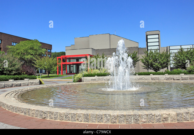 stony brook asian personals Sbu usually has approximately 27% of undergraduate population (approximately 17,000 students both full and part time) self-identifying as asian - this includes us and international students who identify as asian.