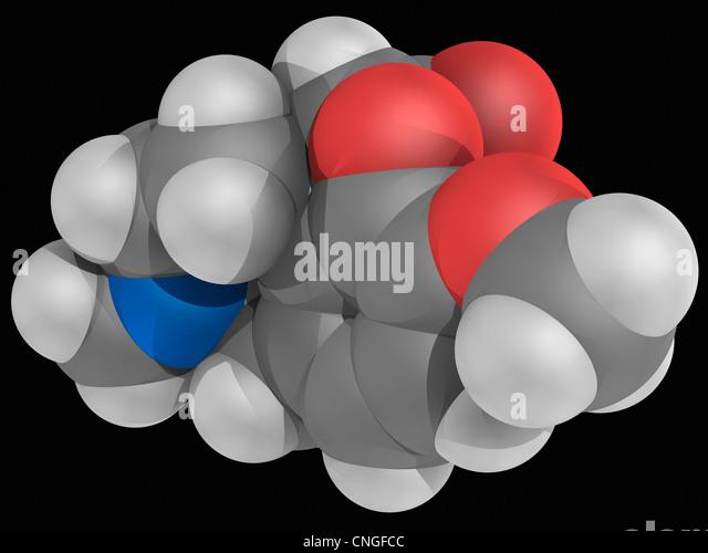 is hydrocodone codeine