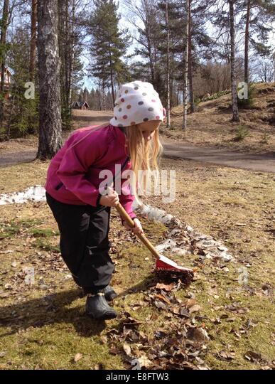 Sweden, Girl (6-7 years) raking leaves in garden - Stock Image