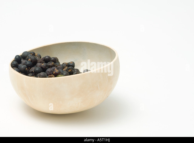 Calabash gourd bowl containing dried berries - Stock Image