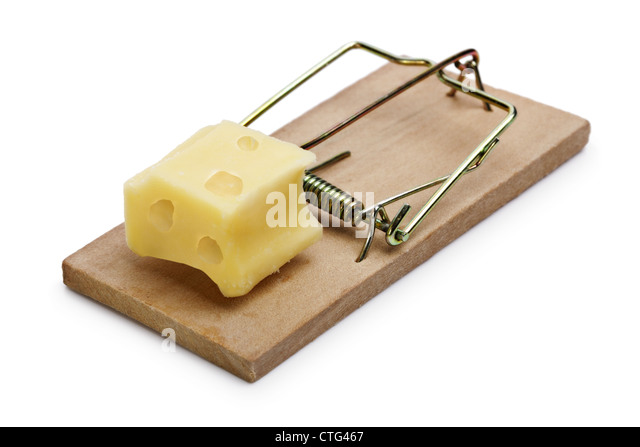 Mousetrap with cheese incentive - Stock Image