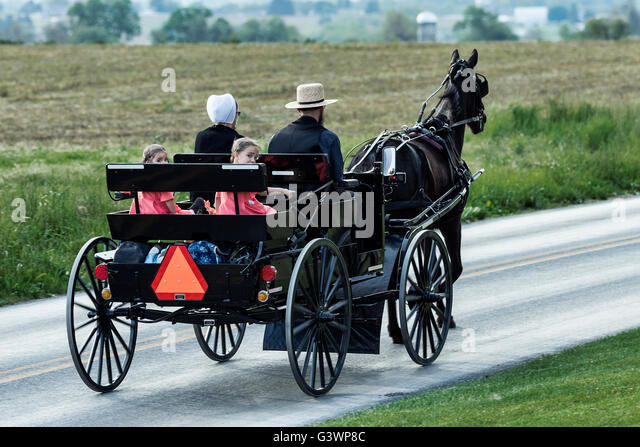 Amish family in horse drawn buggy, Ronks, Lancaster County, Pennsylvania, USA - Stock-Bilder