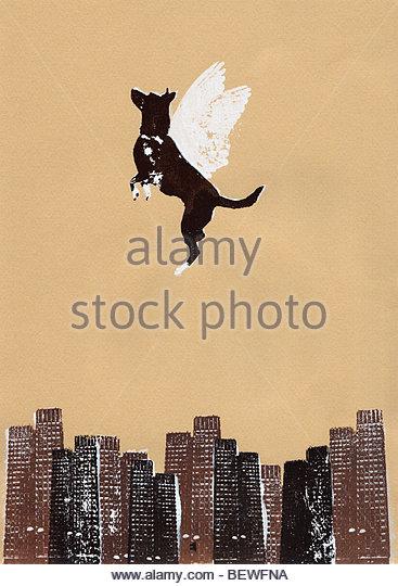 Winged dog flying above city - Stock-Bilder