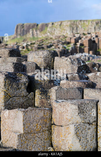 The Giant's Causeway In County Antrim, Northern Ireland - Stock Image