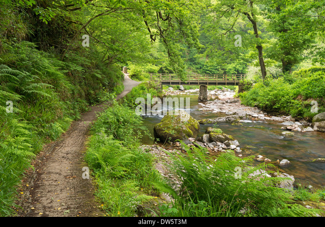 East Lyn River at Watersmeet, Exmoor National Park, Devon, England. Summer (June) 2013 - Stock Image