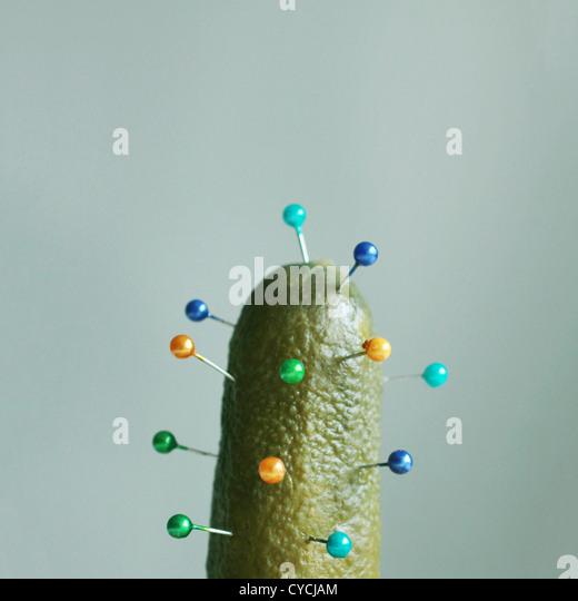 humor,bizarre,cactus,spikes - Stock Image