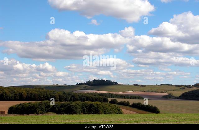 Dorset countryside near Saalisbury - Stock Image