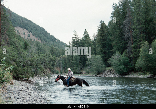 Seeing Wyoming by horseback Shoshone National Forest greater Yellowstone ecosystem COPYRIGHT DUANE BURLESON - Stock Image