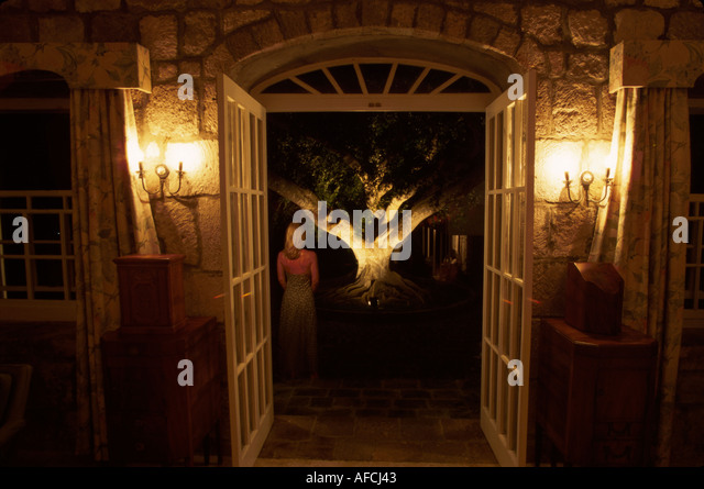 West Indies Nevis Gingerland Montpelier Plantation Inn entrance female banyan tree night - Stock Image