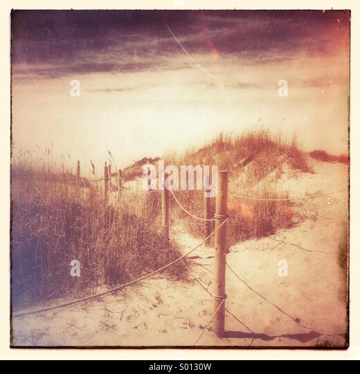 Foot path through the sand dunes - Stock-Bilder
