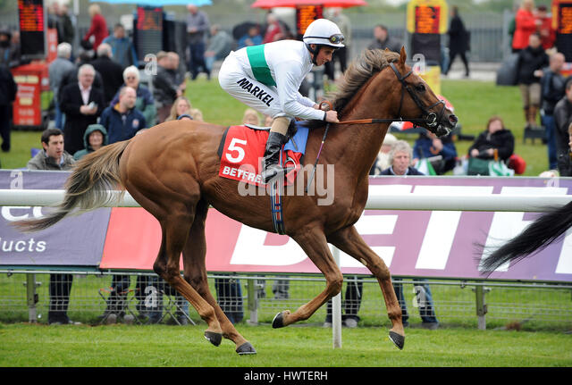 FENCING RIDDEN BY WILLIAM BUICK RIDDEN BY WILLIAM BUICK YORK RACECOURSE YORK ENGLAND 17 May 2012 - Stock Image
