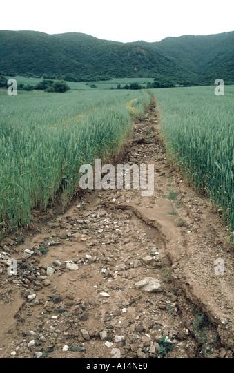 Crop soil erosion stock photos crop soil erosion stock for Soil erosion causes