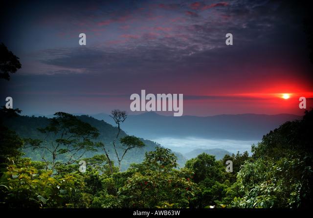 Dawn at Cerro Pirre in Darien national park, Darien province, Republic of Panama. - Stock-Bilder