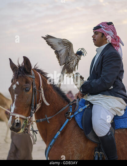 Hunter on horseback with his falcon, Qatar. - Stock-Bilder
