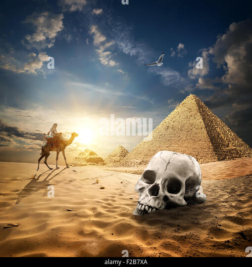 Skull near pyramids in sand desert at sunrise - Stock Image