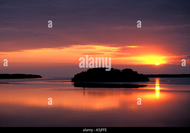 Florida Everglades National Park mangrove island near Flamingo at sunrise - Stock Image