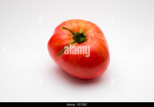 Large, imperfect brandywine tomato (Solanum lycopersicum) on white background - Stock Image