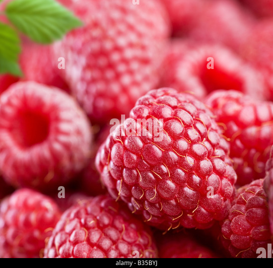 raspberry - Stock Image