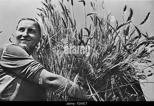 Woman collective farmer with newly harvested wheat. Ca. 1935-40. Near Krasnodar, USSR, (BSLOC_2015_2_255) - Stock-Bilder